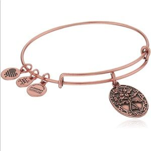 Alex and Ani Friend II Expandable Bracelet